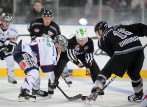 Bully beim DEL-Match zwischen den Nürnberg Ice Tigers und den Eisbären Berlin.